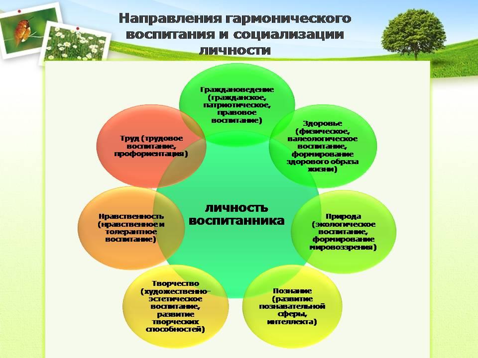 работа школы по формированию здорового образа жизни